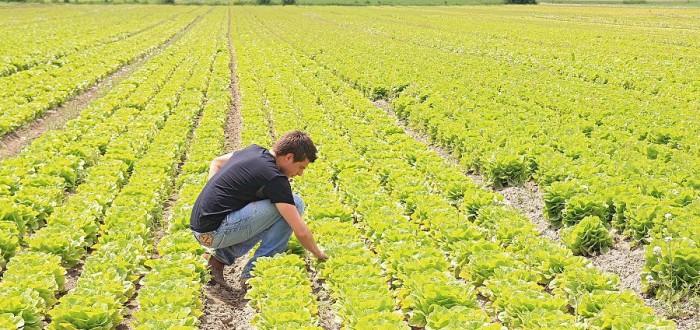 agricoltura--giovani